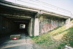 #21119338 — frenchyfyl · Lomography