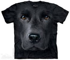 The Mountain Dog Black Lab Labrador Retriever Big Face Loyal Cute Dogs Puppy Friend Animal Pet Gift Labrador Noir, Black Labrador, Labrador Retrievers, Zebras, T Shirt Chien, Black Labs Dogs, Big Face, German Shorthaired Pointer, Little Girl Fashion