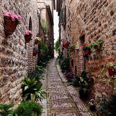 Spello (Perugia)