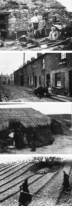 Poverty in the Ulster Plantation inhabited by the Ulster Scots.