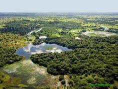 Pantanal | Brasil