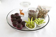 Edible terrariums- @summerlkisner we should do these for  kyle's bday