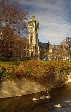 Clocktower University of Otago in Dunedin, New ZealandUniversity of Otago in Dunedin, New Zealand Study In New Zealand, New Zealand South Island, New Zealand Travel, The Beautiful Country, Beautiful Places, Islas Cook, Hong Kong, New Zealand Houses, South Pacific
