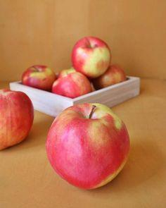 smells like apple pie  #apples  #pie  #glutenfree  #inprogress   #homemade  #inmykitchen  #glutenfreeliving  #foodbloger  #fruit  #instadaily  #instayummy  #foodi  #foodpics  #instafoodie  #wonderful  #canwait  #foodlife
