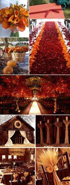orange automn wedding ideas