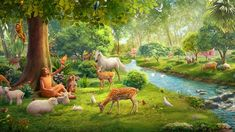 The church of almighty god-the story of genesis: what was god's will behind adam naming the animals? True Faith, Faith In God, Kain Und Abel, Adams Name, Jungle Illustration, Gods Guidance, Jesus Resurrection, The Deed, Gods Will