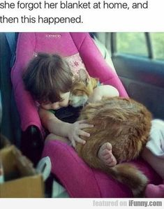 26 moments that restored our faith in humanity in baby Animals Animals Crazy Cat Lady, Crazy Cats, I Love Cats, Cool Cats, Hate Cats, Cute Baby Animals, Funny Animals, Kids Animals, Animal Pictures