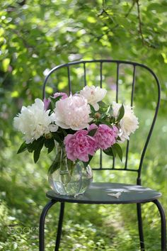 Still life in a sunny garden with white and pink peonies in a glass jug on a chair. Beautiful Rose Flowers, Beautiful Flower Arrangements, Floral Arrangements, Peonies Garden, Pink Garden, Flower Quotes, My Secret Garden, Flower Backgrounds, Pink Peonies