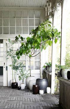 Maak een groep van plantenpotten in je tuin voor een vrolijk geheel. Ook ideaal voor het balkon. Variër met potten in verschillende hoogtes en materialen.