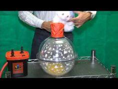 Máquina Balão Presente Manual, maquina balão embalagem, - Acessorios para Festas - Acessórios para Festas | Artigos para festas