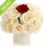 There are several online flower delivery sites who are into the business of sending flowers to various places within India and even out of India. Flowers can be delivered to Noida using these sites.For details refer to http://www.myflowertree.com/send-flowers-to-noida.html