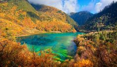 he pristine water of Wuhua Hai, or Five-Flower Lake, is the pride of Jiuzhaigon National Park in China. The shallow lake glistens different shades of turquoise and its floor is littered with fallen ancient tree trunks. Wuhua Hai is one in the legendary 108 haizi, or multicolored lakes, in the National Park, that according to legend, were created after an ancient Goddess dropped a mirror that her lover had given her, smashing it into 108 pieces.