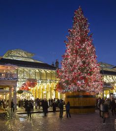 Share London's magical moments this Christmas to make it a festive season to remember.