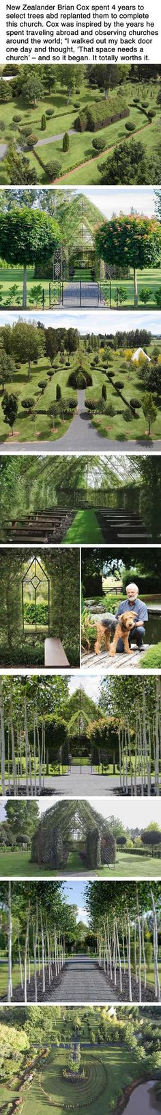 This Man Spent Four Years Growing A Church From Trees