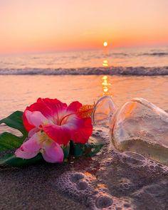 Beautiful Nature Pictures, Beautiful Sunset, Beautiful Landscapes, Beautiful Flowers, Beautiful Places, Amazing Nature, Image Pastel, Amazing Sunsets, Jolie Photo