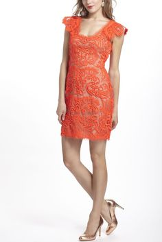 Lace Dresses - conflicted pixie