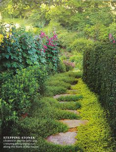 retirement garden dream