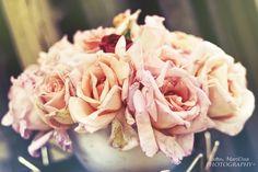 Antique roses....