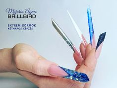 BrillBird Nails, Beauty, Finger Nails, Ongles, Beauty Illustration, Nail, Nail Manicure