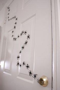 Camino de arañas