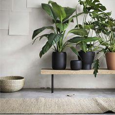 Poppytalk: Sneak Peek 2016 Ikea Catalogue | New Collections | Plant pot
