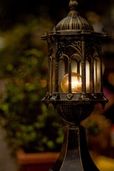 Night light....Looks magical.
