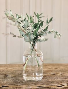 Simple wedding centerpiece Olive leaf and green stem wedding centerpiece Lee Floral Design. Plant Centerpieces, Greenery Centerpiece, Simple Wedding Centerpieces, Bridal Shower Centerpieces, Wedding Decorations, Centerpiece Ideas, Floral Wedding, Wedding Flowers, Olive Wedding