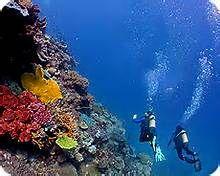 Ensenada Scuba Diving