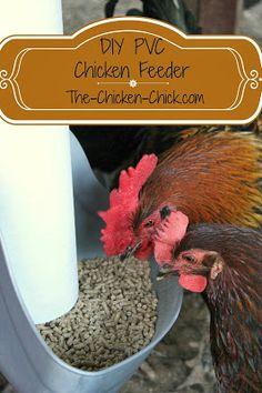 The Chicken Chick®: My PVC Chicken Feeder. DIY instructions!