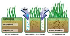 How lawn aeration benefits your grass