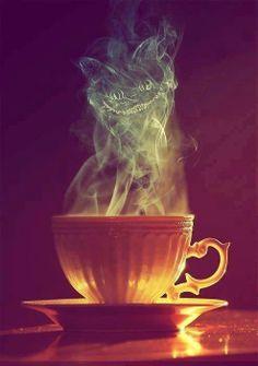 Coffee cat alice in wonderland
