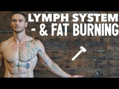 What is the Lymphatic System: Boost Immune System & Increase Fat Loss Thomas Delauer, Lymphatic Massage, Instant Weight Loss, Muscle Anatomy, Boost Immune System, Lymphatic System, Mind Body Soul, No Equipment Workout, Weight Loss Motivation