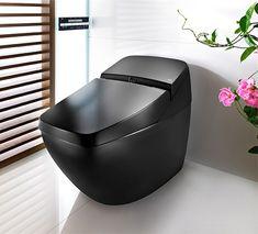 Sleek Toilet by Roca is also hi-tech