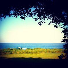 木陰からの波チェック #沖縄#恩納村#海#木陰#芝生#波#沖縄サーフポイント#沖縄サーフィン#サーフィン#沖縄西海岸 #okinawa#onnason#ocean#surfing#sea#surfpoint#instagood##feelgood#trip#likeforlike