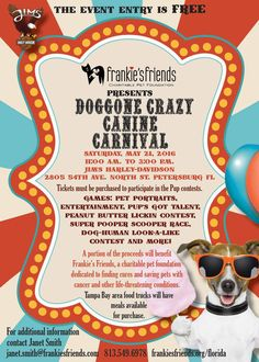 In St. Pete, check out Frankie's Friends Doggone Crazy Canine Carnival at Jim's Harley-Davidson from 11a until 3p. Then head over (before or after) to check out what's in store at Pet Food Warehouse. Be sure to keep checking on the EVENTS page at www.TheNewBarker.com for updates of dog-friendly events. #TheNewBarker #DogFriendlyFlorida