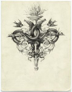 Torch and a thorny branch forming a cross with snakes and birds From Les saints evangiles by Alexandre Bida. (Paris - Hachette, 1873.)