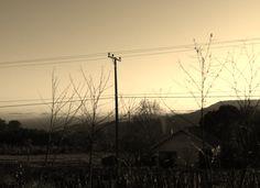 Na estrada ... Em algum lugar entre Gramado / RS and Caxias / RS