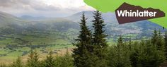 LAKE DISTRICT - WHINLATTER FOREST PARK (Whinlatter Forest Park, Keswick, Cumbria CA12 5TW  017687 78469) Days Of The Year, Days Out, Forest Park, Cumbria, Lake District, Us Travel, Glamping, Things To Do, Places To Visit