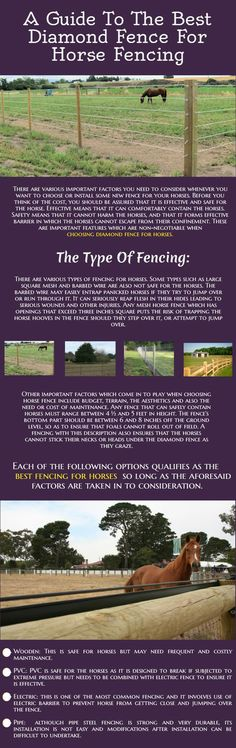 A Guide To The Best Diamond Fence For Horse Fencing