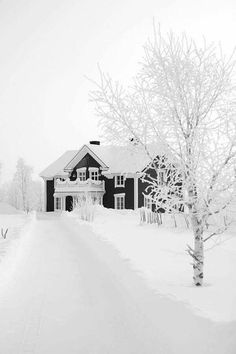 Pics on Talvi Suomessa. Winter in Finland. Winter in Finland. Winter Szenen, Winter Love, Winter Magic, Winter White, Winter Christmas, Snow White, Prim Christmas, White Christmas Snow, Christmas Cover