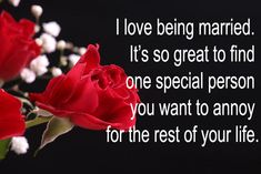 Funny Valentine's Day Quotes That Will Make You Chuckle | Shibley Smiles