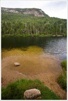 Upper Greeley Pond NH