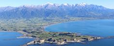 Whale Watch flights Kaikoura - Wings over Whales provide 30 minute flights off the Kaikoura Coastline to see the majestic Sperm Whales & large pods of Dusky dolphins. Flight Wings, Wedding New Zealand, Whale Watching, Destination Weddings, Whales, Dolphins, Diving, Wedding Venues, Surface