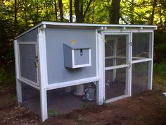 Backyard Chicken/Pigeon Loft