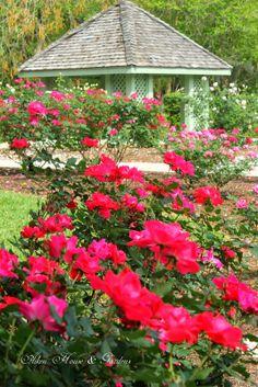 Aiken House & Gardens: Harry P. Leu Gardens