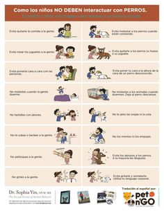 Cómo los niños NO deben interactuar con los perros  How children should not interact with dogs  By Dra. Sophia Yin
