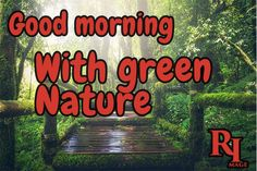 Good morning with green nature Good Morning Nature Images, Green Nature, Hd Images, Feel Good, Feelings, Pictures, Beautiful, Photos, Background Images Hd