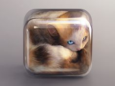 Don't worry, the back side of the cube is open, the kitten is safe.