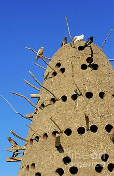 Traditional Egyptian Pigeon House