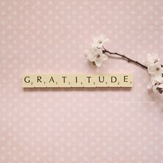 Gratitude. Let it breathe through you and be the lens through which you see life today.